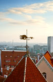 Weather vane Golden Cockerel in Tallinn Royalty Free Stock Photography
