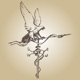 Weather vane hand Royalty Free Stock Images