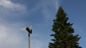 Weather vane in shape of wooden airplane with rotating propeller.  stock footage