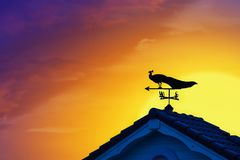 Weather vane at sunrise with bright colors in clouds for early m. Orning wake up royalty free stock image
