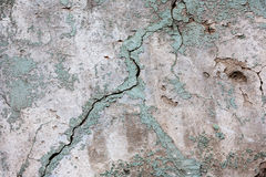 Weather worn wall. Textured background of cracked,chipped and faded concrete with a formation lichen growing on it stock photos