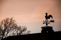 Weathercock. Silhouette of a weathercock on sunset Royalty Free Stock Photo