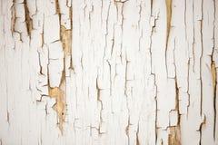 Weathered崩裂了油漆背景 覆盖物艺术品的难看的东西黑白纹理模板 免版税图库摄影
