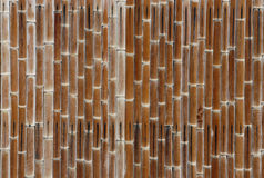 Weathered bamboo wall. A background of bamboo pieces nailed to a wall Royalty Free Stock Photos