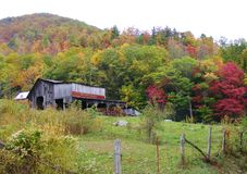 A WEATHERED BARN IN A FIELD AND COLORFUL FALL FOLIAGE Stock Image