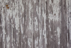 Weathered Barn Wood. Weathered side of a barn where paint is peeling off after years on the wood stock images