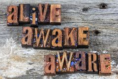 Alive awake aware message grunge. Weathered barn wood background alive awake aware sign letterpress wooden block letters message caution typography awareness stock image