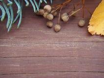 Weathered barn wood background royalty free stock image