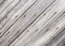 Weathered barn wood. Gray wood with rusty nails Royalty Free Stock Images