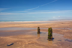Weathered Beach groynes on Westward Ho. Gorgeous weathered groynes on Westward Ho Beach in North Devon , England Royalty Free Stock Photo
