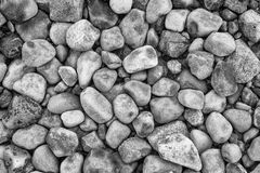 Weathered beach stones #3. Detailed background texture of weathered beach stones in Galway, Ireland Stock Images