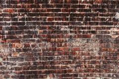 Weathered befleckte alte dunkle Backsteinmauer, Beschaffenheitsschmutzhintergrund Lizenzfreie Stockbilder