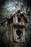 Weathered Bird House battered by squirrels and woodpeckers Royalty Free Stock Images