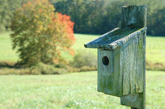 Weathered Birdhouse in a Meadow. With fall foliage in the background Stock Photos