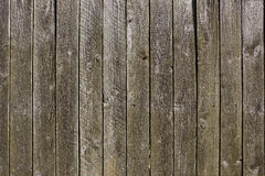 Weathered boards Royalty Free Stock Photos