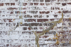 Weathered Brick Background Royalty Free Stock Photos