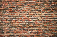 Weathered brick wall Royalty Free Stock Photography