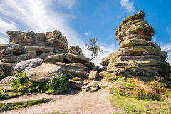 Weathered Brimham Rocks. Brimham Rocks on Brimham Moor in North Yorkshire are weathered sandstone, known as Millstone Grit,creating some dramatic shapes, many of Royalty Free Stock Photo
