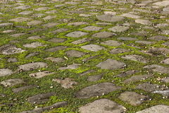 Weathered cobbles Stock Image