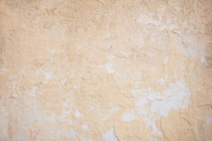 Weathered concrete wall in peach color Stock Image