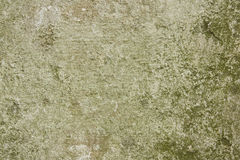 Weathered concrete wall Royalty Free Stock Photo