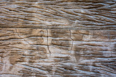 Weathered Cracked wood for texture background Stock Photo