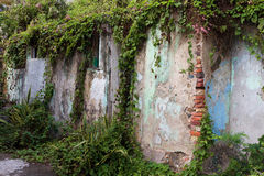 Weathered and crumbling wall Stock Images