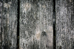 Weathered Deck Boards. Detailed close up of weathered deck boards with nails and lichen. A great texture image for a background or overlay stock photo