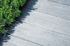 Weathered decking Royalty Free Stock Photography