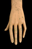 Weathered doll hand Royalty Free Stock Photo