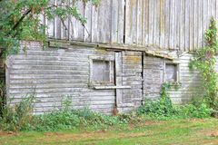 Old Barn Facade With Warped, Rotten Wood. The weathered and faded side of an old barn building built a century ago royalty free stock images