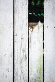 Weathered fence Royalty Free Stock Photography