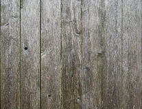 Weathered Fence slates. Stock Image