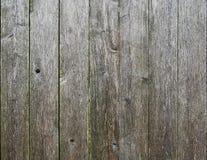 Weathered Fence slates. Stock Image
