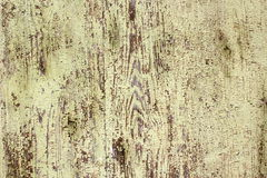 Weathered green paint on wood plank Stock Images