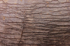 Weathered Leather Background Stock Photography