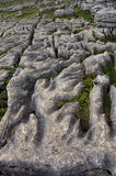 Weathered Limestone at Malham. The weathered limestone rocks above Malham Cove, Yorkshire royalty free stock photo