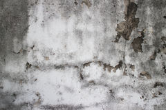 Weathered moldy detail of old colonial wall in Southeast Asia fe. Aturing large peeled-paint patch on upper right of frame. Time, weather, and humidity have lent Stock Photography