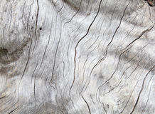 Weathered Natural Wood Stock Images