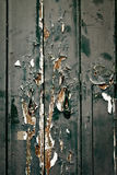 Weathered old door Stock Images