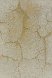 Weathered old stucco wall Stock Photography