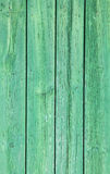 Weathered old wood natural faded bright green painted background Royalty Free Stock Images