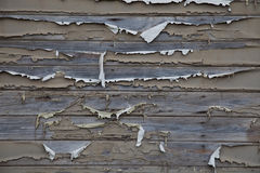 Weathered painted wood background Royalty Free Stock Image