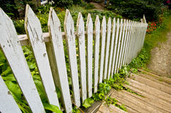 Weathered Picket Fence. View of a weathered picket fence Stock Images