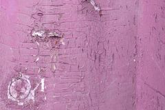 Weathered pink colored paint on rustic wooden panel stock photo