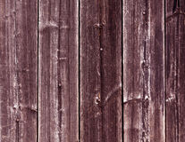 Weathered pink wooden fence texture with nails. Royalty Free Stock Photos