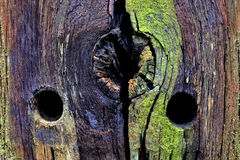 Weathered pole of a fence. Royalty Free Stock Images