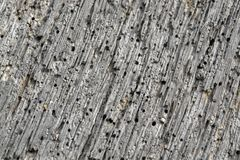 Weathered porous wood detail Royalty Free Stock Photography