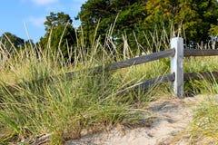 Weathered recinta l'erba della duna immagini stock libere da diritti