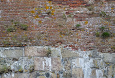 Weathered Red Brick Wall with Plants Growing on it Royalty Free Stock Photography